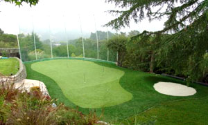 Delicieux Artificial Backyard Golf Putting Greens | Practice Golf Putting Greens