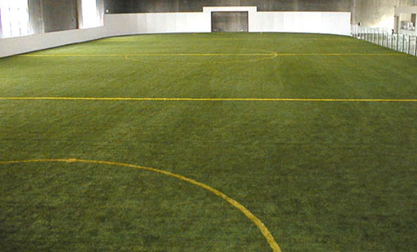 Artificial Grass Synthetic Turf for Athletic Fields Football
